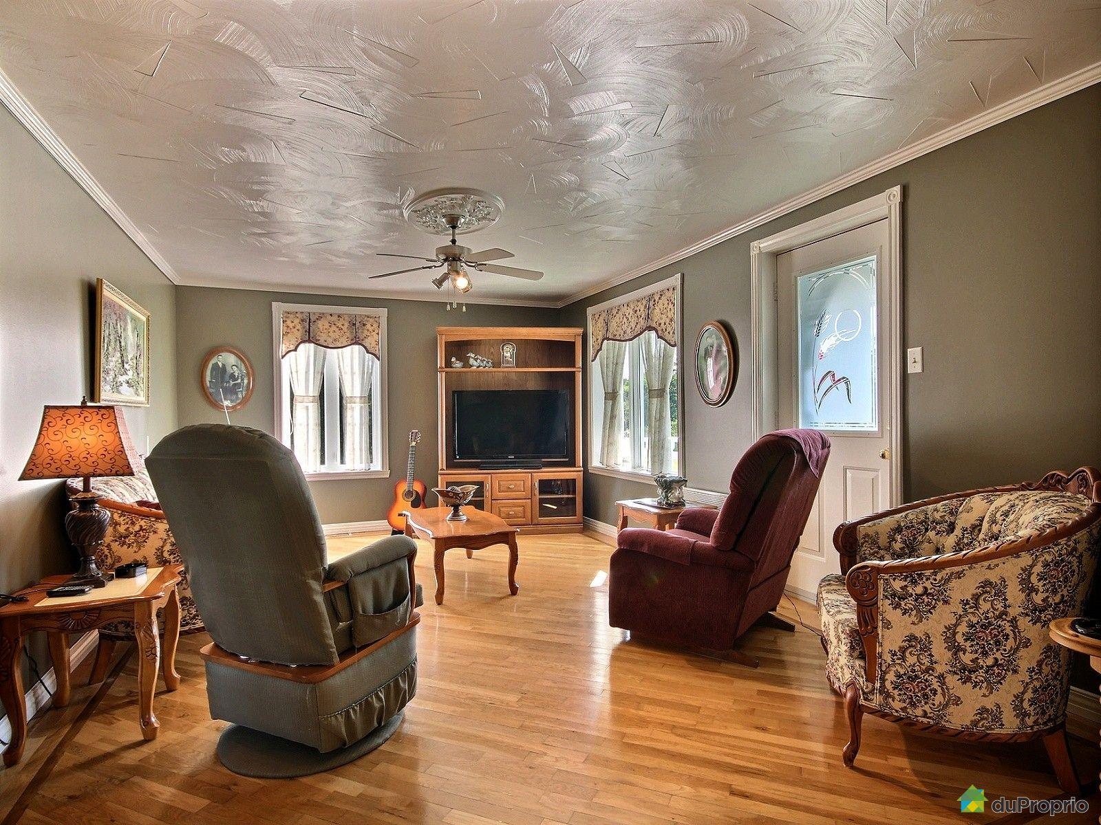 Maison vendre st epiphane 360 rang 4e est immobilier for Salon maison de campagne
