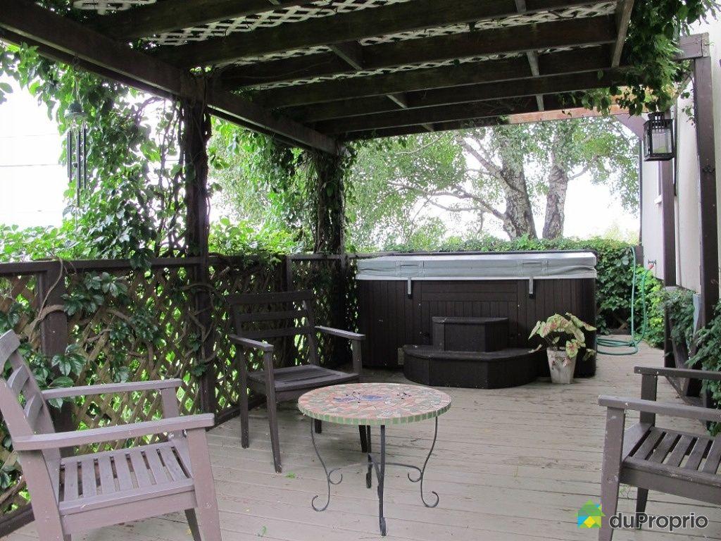 maison vendu st damase immobilier qu bec duproprio 448931. Black Bedroom Furniture Sets. Home Design Ideas