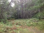 Terre � bois � Aumond, Outaouais