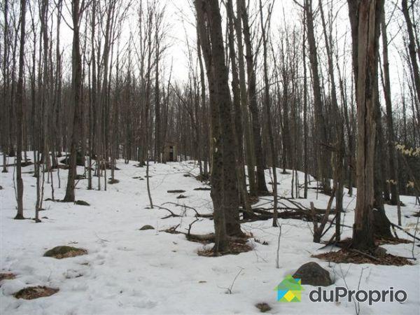 terrain boise a vendre dans lanaudiere