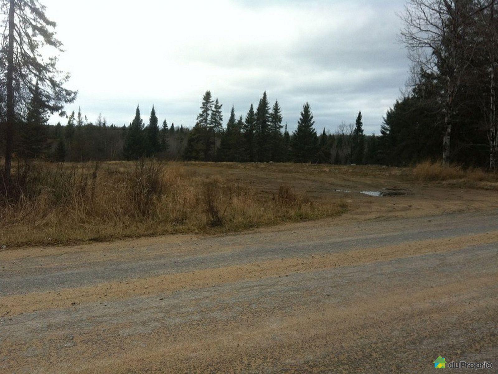 Terreà boisà vendre St Zénon, 4 Petites terres semi boisées, immobilier Québec DuProprio  # Four A Bois A Vendre