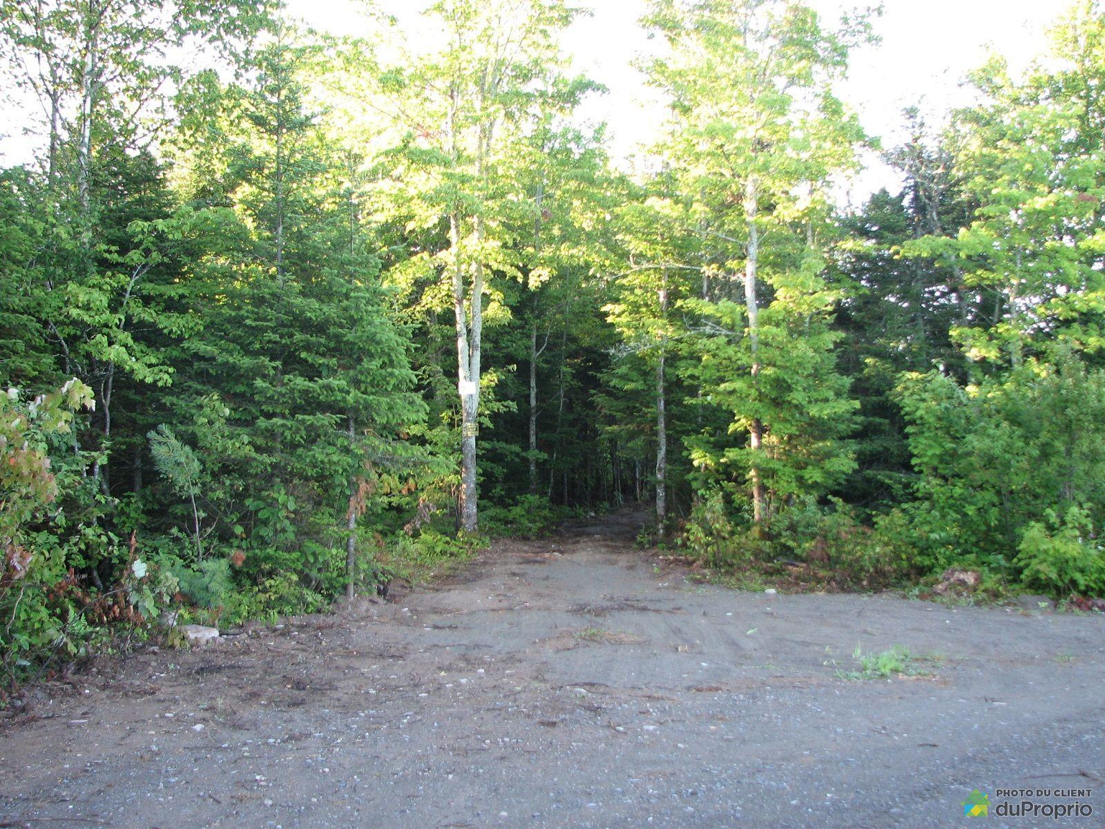 Terre à bois vendu StePerpétuedeLIslet, immobilier
