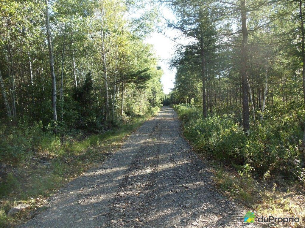 terre 224 bois vendu tourville immobilier qu 233 bec duproprio 433181