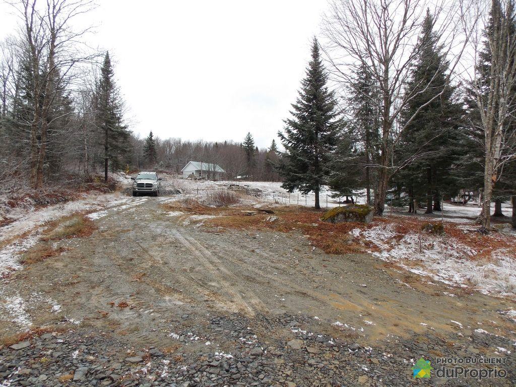 Terreà bois commercialeà vendre St Luc De Bellechasse, x route Leclerc, immobilier Québec  # Bois De Chasse A Vendre