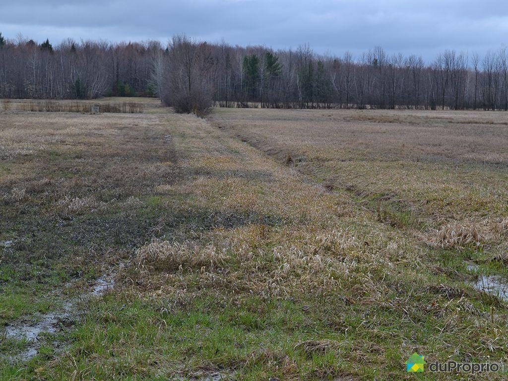 terrain agricole a vendre estrie