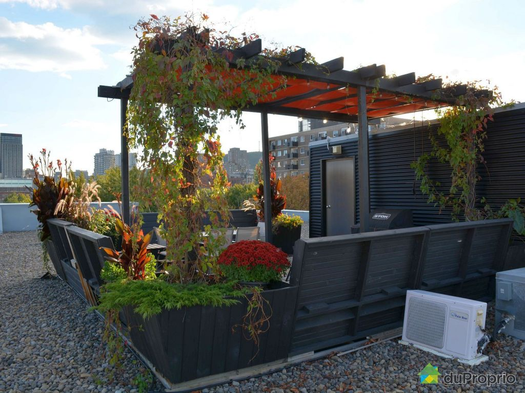 Loft sur le toit avec terrasse arbor e new york pictures to pin on pinterest - Terrasse piscine montreal rouen ...