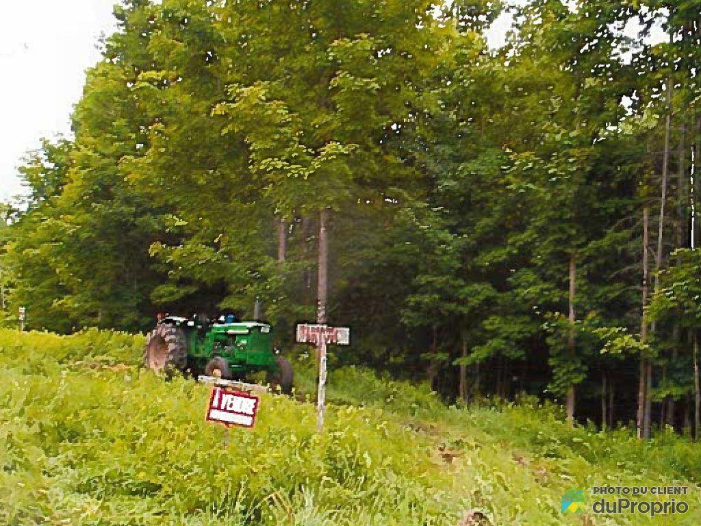 terre 224 bois 224 vendre coaticook 2486 chemin goudreau immobilier qu 233 bec duproprio 706595