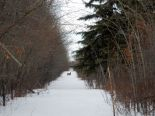 Residential Lot in Parkland County, Spruce Grove / Parkland County / Yellowhead County  0% commission