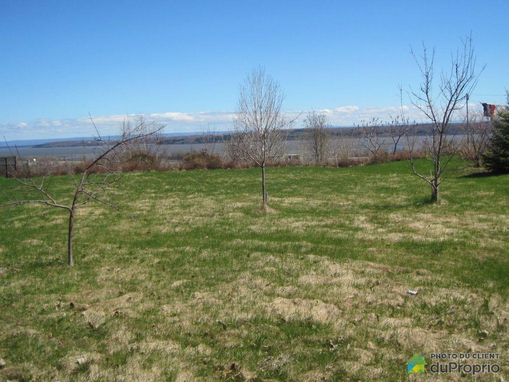Terrain boise a vendre rive nord for Terrain nord