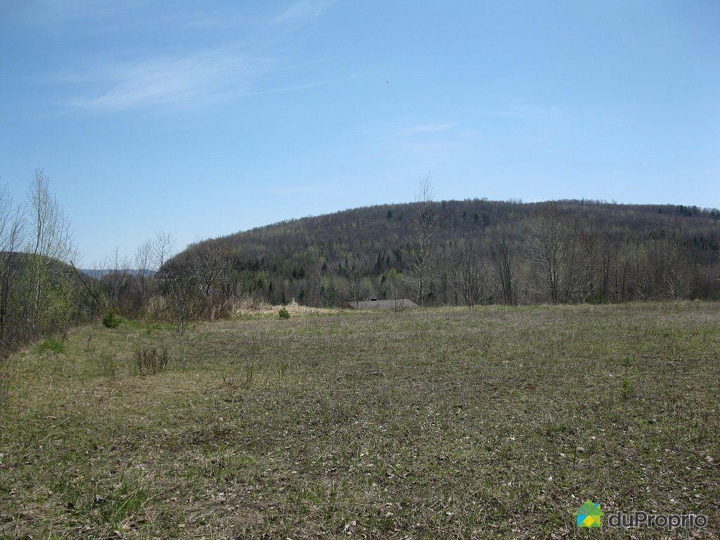 Terrain r sidentiel vendre mont tremblant x route 117 for Lac miroir mont tremblant